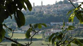 In moto nel Monferrato