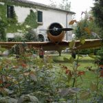 Museo San Pelagio