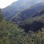 Strada verso Altopiano Asiago