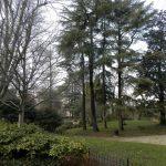 Giardini vicino Cappella degli Scrovegni