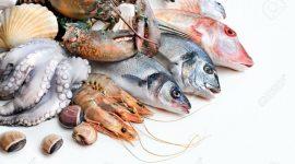 La stagionalità di pesci, molluschi e crostacei