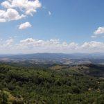 Verso Castellina In Chianti