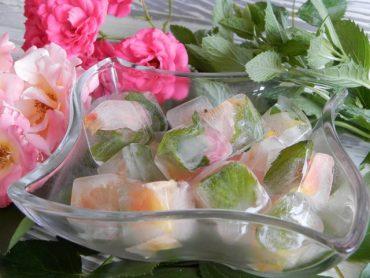 Cubetti di ghiaccio mini con petali di rosa e menta