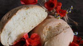 Pane siciliano di semola rimacinata